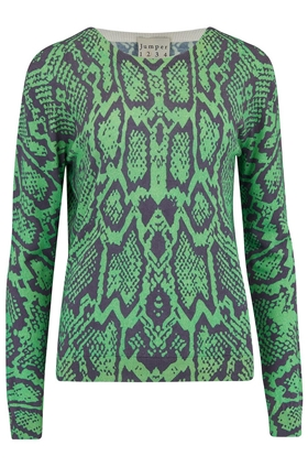 Snake Print Jumper in Green
